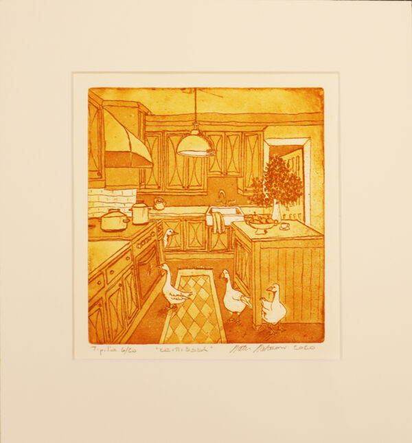Satu Salonen - Keittiössä